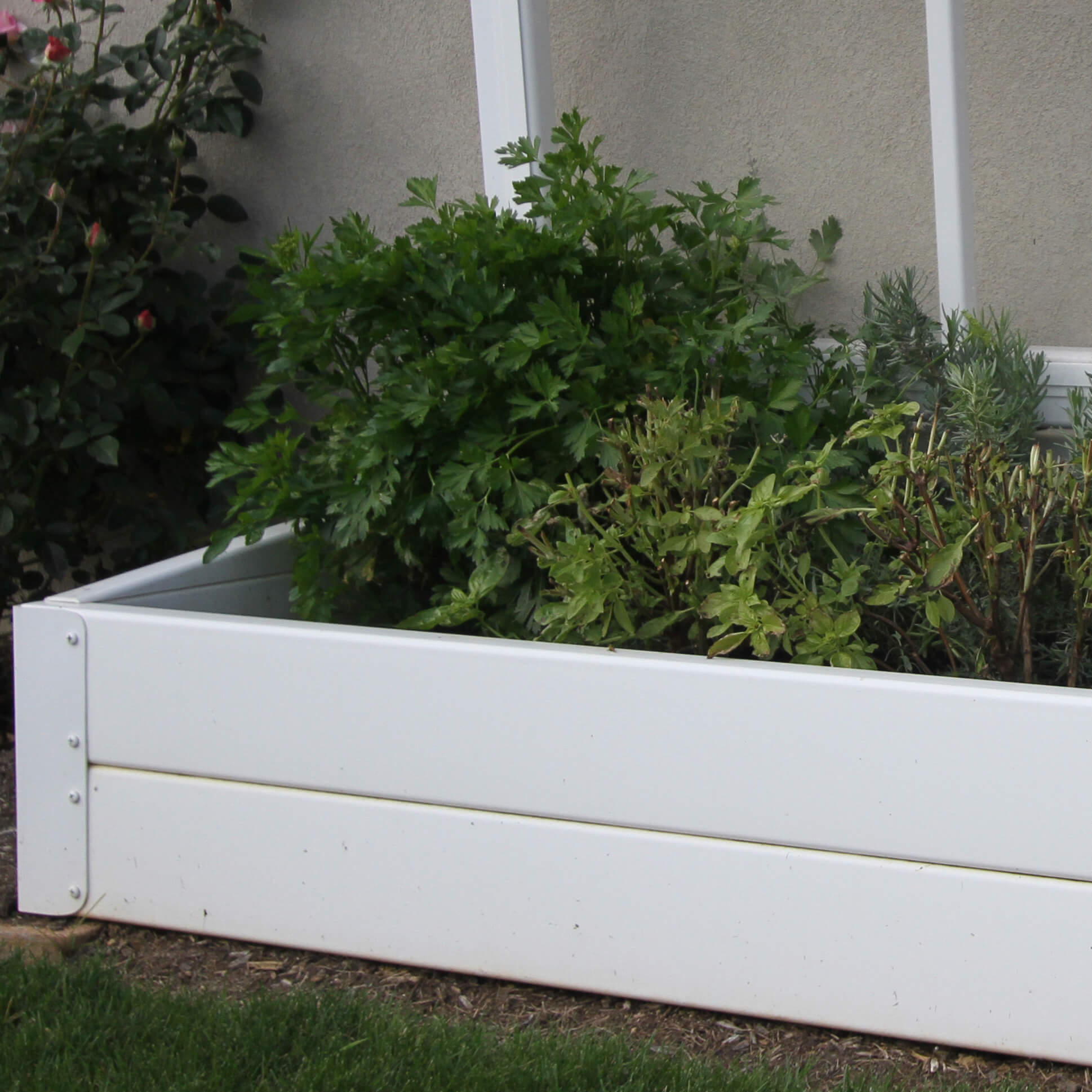 Low-Maintenance Vinyl Cold Frames - Superior Plastic Products